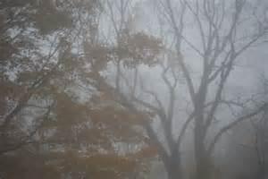 Hada's Fog