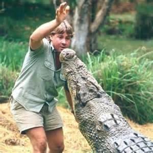 Bindi's dad with croc