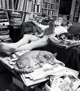 Hemingway with three cats