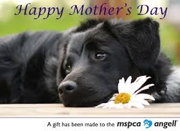 Happy Mothers Day with dog