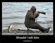 photography bird behind him